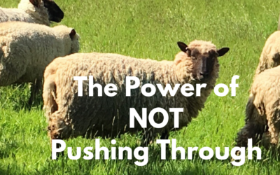 The Power of NOT Pushing Through